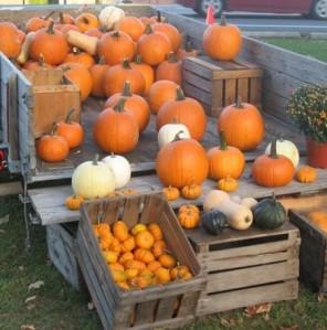 townshend vt pumpkins