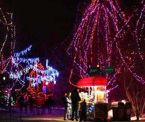 columbus-OH-Zoo-lights