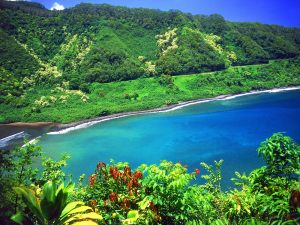 Maui-lagoon